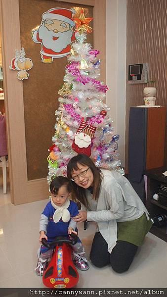 20121223到姐姐家看聖誕樹 (5)