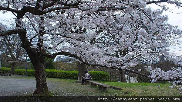 福岡~舞鶴公園 (4)