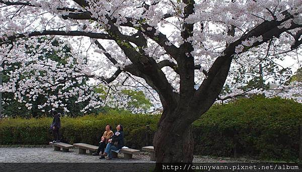 福岡~舞鶴公園