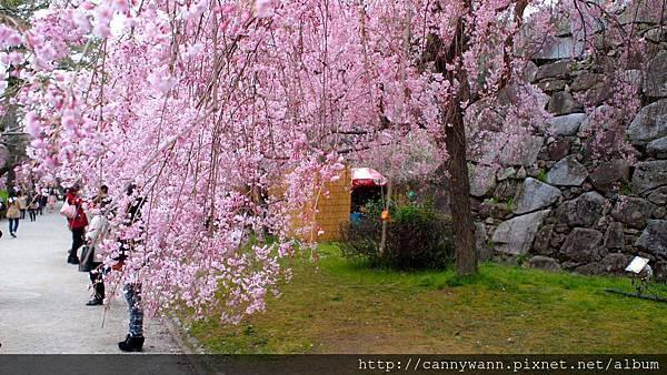 福岡~舞鶴公園 (2)