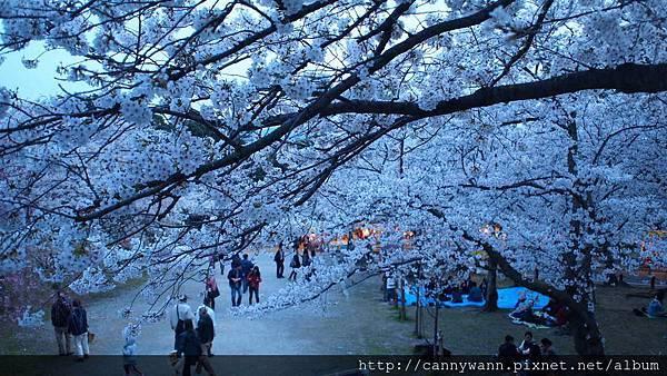 福岡~西公園 (4)