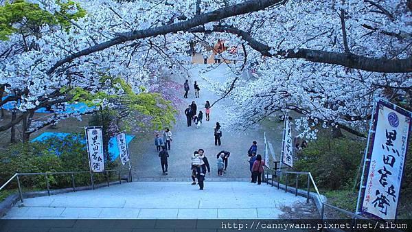 福岡~西公園 (2)