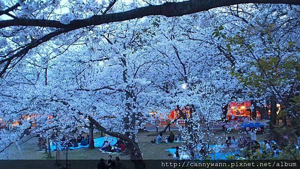福岡~西公園 (5)