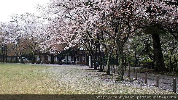 水前寺成趣園 (5)