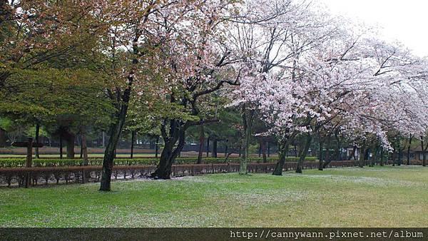 水前寺成趣園 (3)