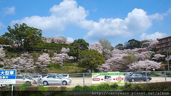 菊池公園 (4)