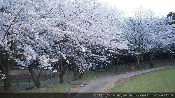 長崎西海橋~粉紅城堡飯店 (7)