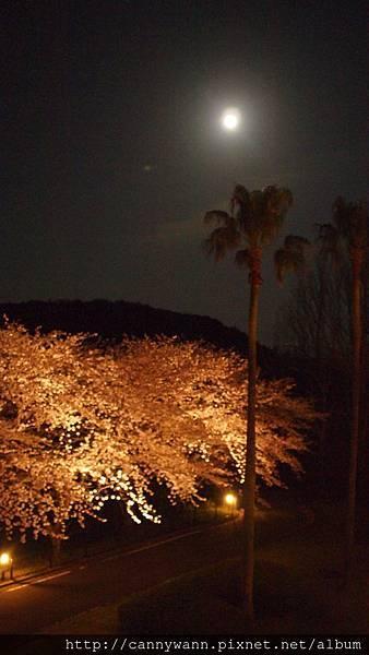 長崎西海橋~粉紅城堡飯店 (20)
