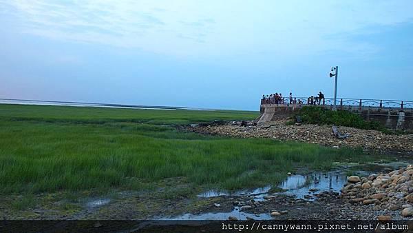 20130518高美濕地 (20)