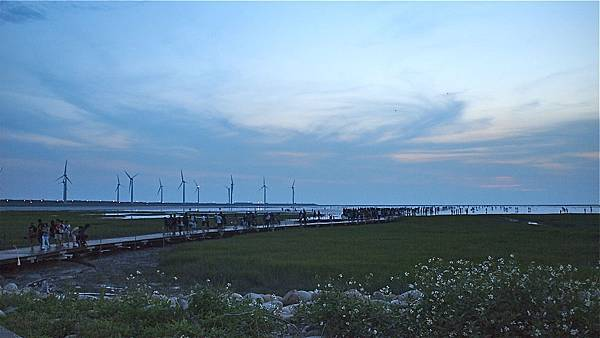 20130525高美濕地 (14)