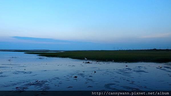 高美濕地20130609 (11)