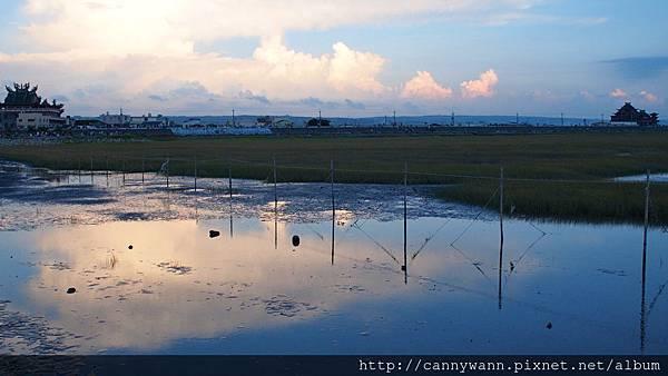 高美濕地20130609 (3)