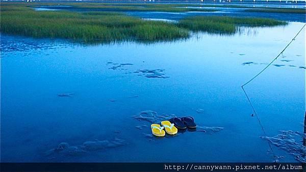 高美濕地20130609 (21)