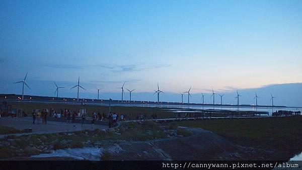 高美濕地20130609 (28)