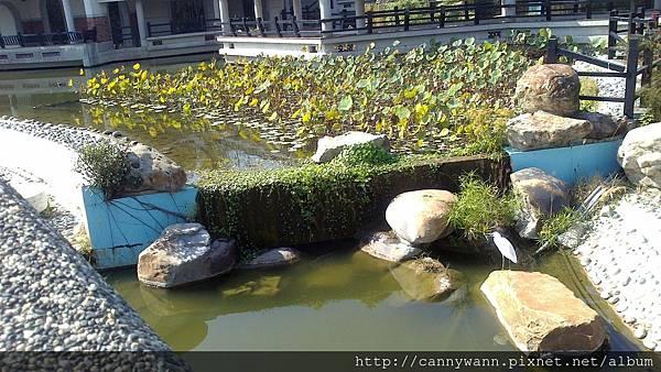 20131205藝術館的小白鷺鷥 (3)