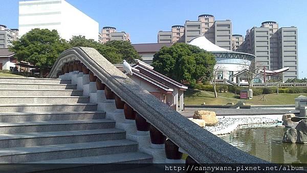 20131205藝術館的小白鷺鷥 (2)