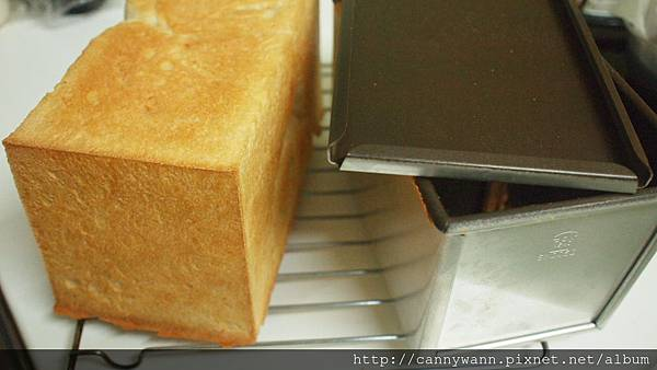 自己做麵包&披薩 (2)