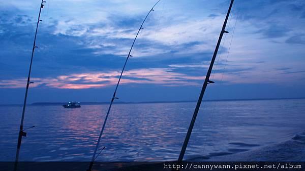 夜釣小管 (2)
