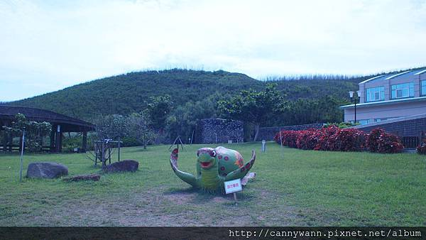 望安嶼~綠蠵龜觀光保育中心