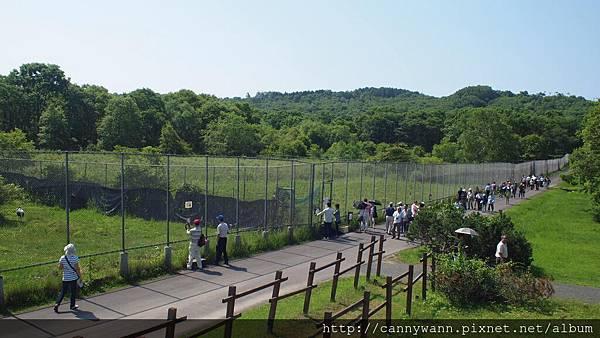 丹頂鶴自然公園 (2)