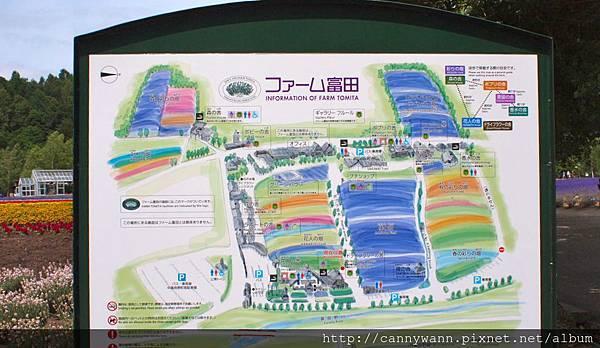 富良野富田花園農場 (13)