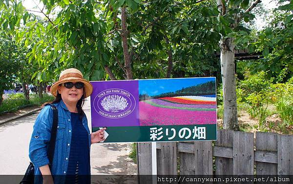 富良野富田花園農場 (15)