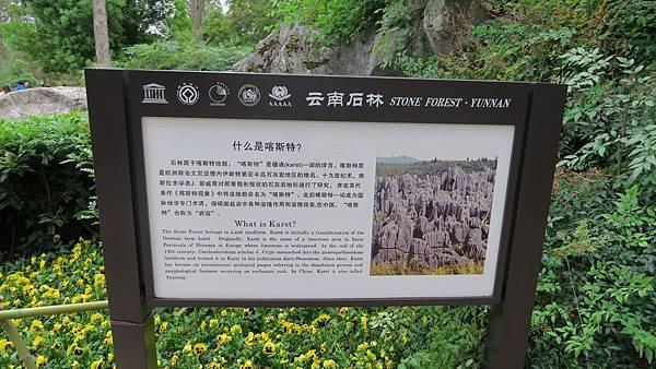 石林風景區 (2)