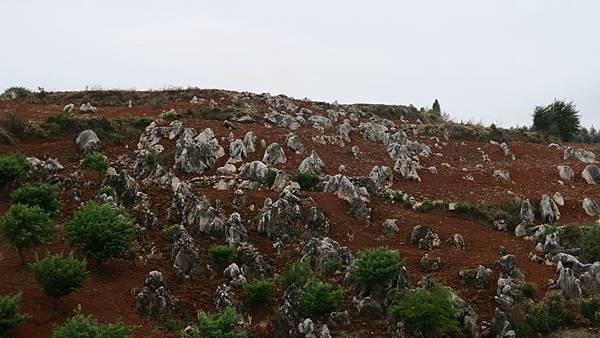 石林風景區 (18)