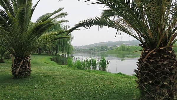 湖泉酒店 (6)
