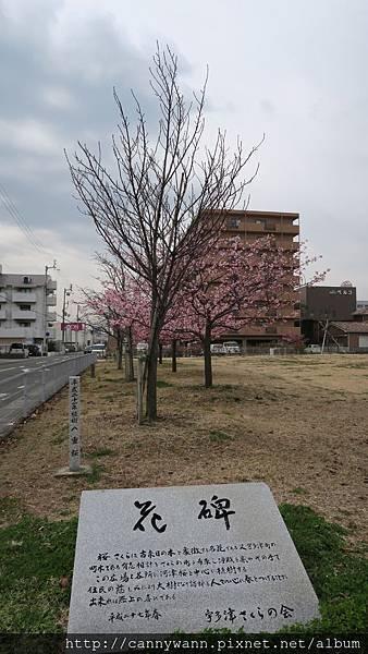 宇多津櫻花公園