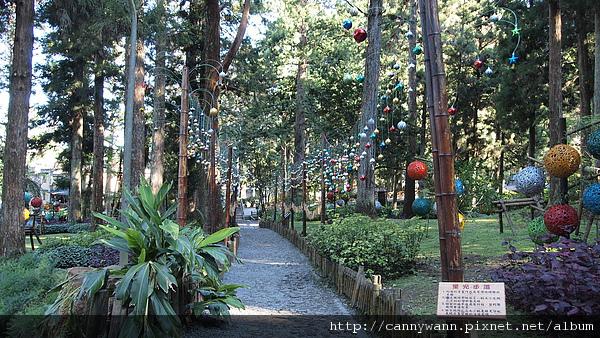 溪頭耶誕裝飾~星光步道