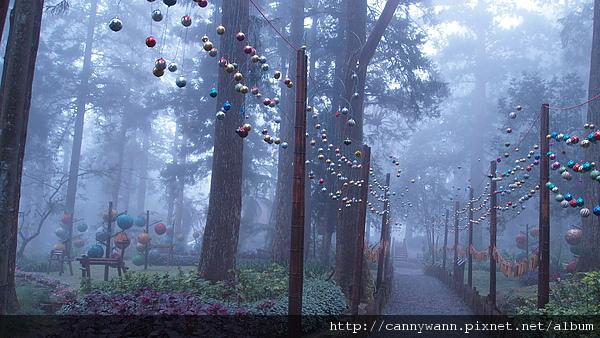 201012溪頭聖誕裝飾