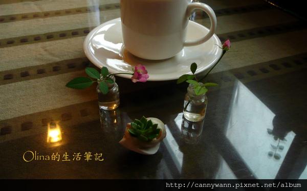 優典咖啡廳的花花草草 (4).jpg
