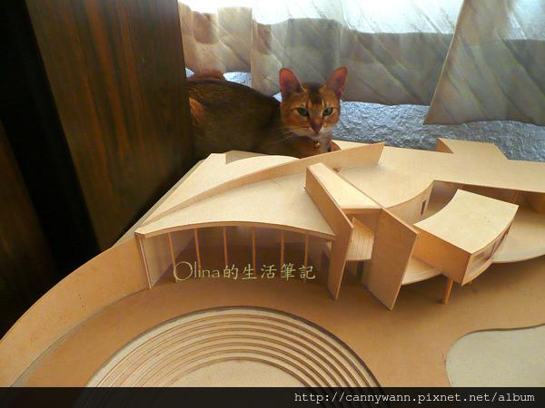 窗台上的貓和薰衣草 (2).jpg