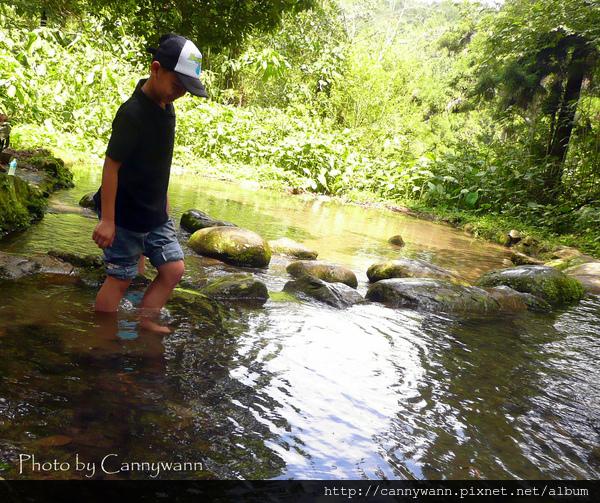 溪頭~森林浴