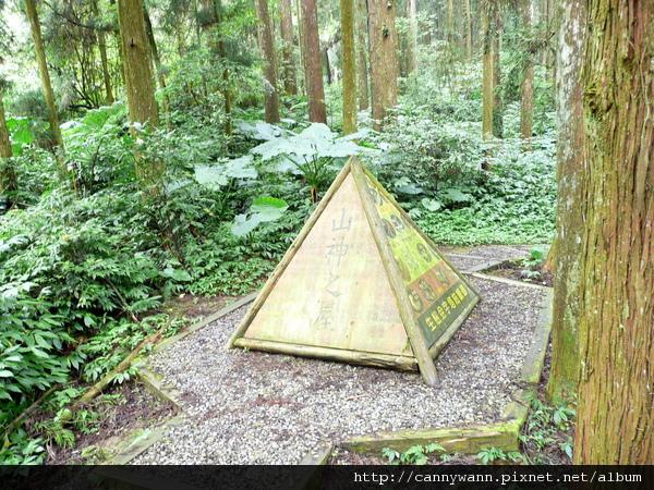 溪頭森林探索區 (1).jpg