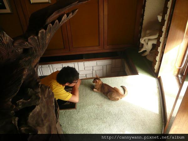 魚和貓的對話 (5).JPG