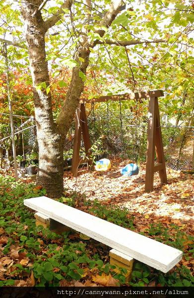 楓林中的鞦韆