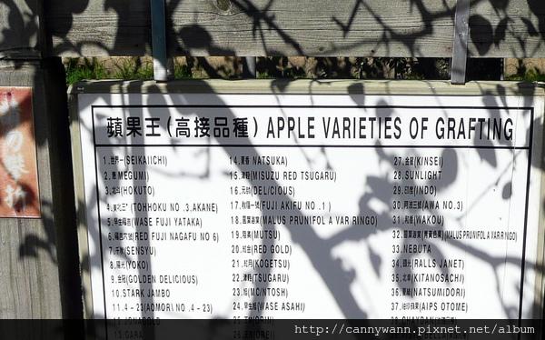 福壽山農場~蘋果王