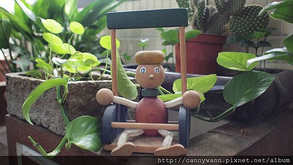 窗台上的植物