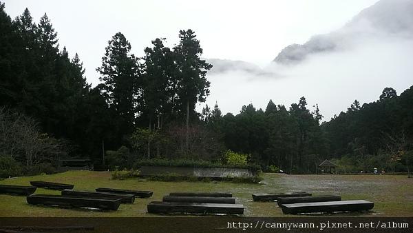寒冬雨中的溪頭 (4).JPG
