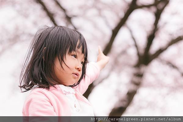 ANJIMG_0967_TP_V.jpg