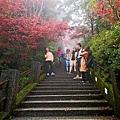 42 太平山莊 紫葉槭.jpg