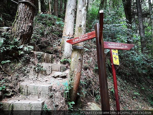 10 東洗水山登山步道.jpg