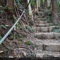11 東洗水山登山步道.jpg