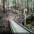12 東洗水山登山步道.jpg