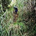 15 東洗水山登山步道.jpg