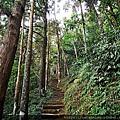12 仙山登山步道.jpg