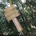13 仙山登山步道.jpg