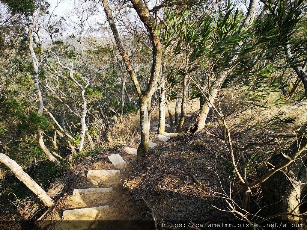 32 文山步道另一側.jpg